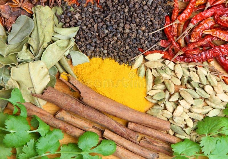 Épices indiennes de cari image stock