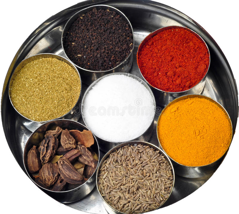 Épices indiennes de poudre photographie stock