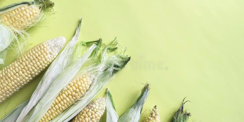 Épis de maïs naturels mûrs Consommation saine Produits qui respecte l'environnement Aliment biologique photos libres de droits