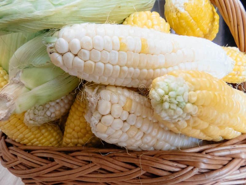 Épis de maïs naturels mûrs dans un panier photos libres de droits
