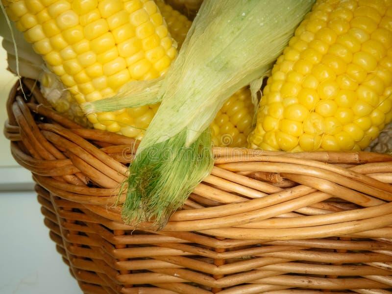 Épis de maïs naturels mûrs dans un panier images libres de droits