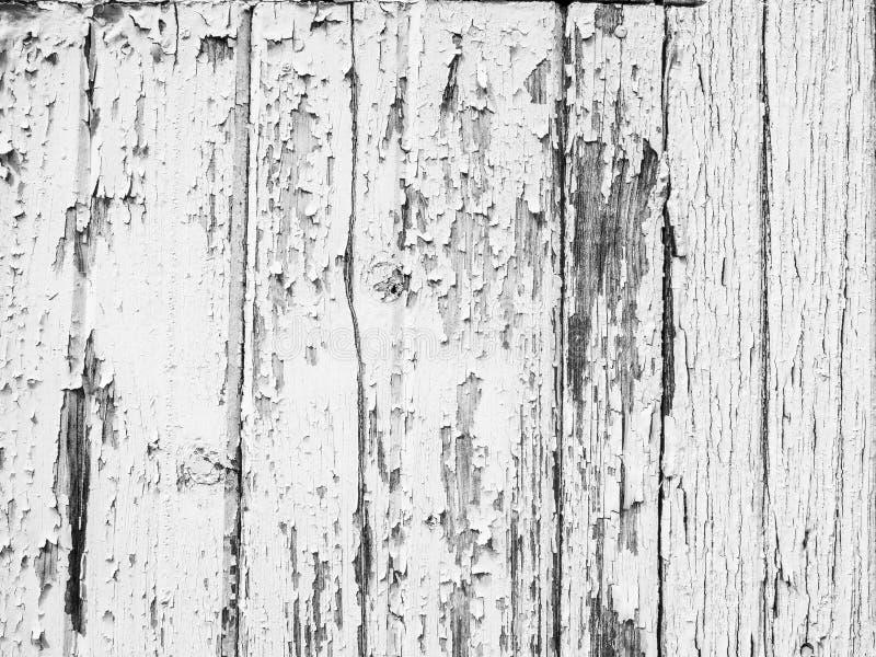 Épluchage du fond extérieur en bois blanc de locations de peinture photo stock