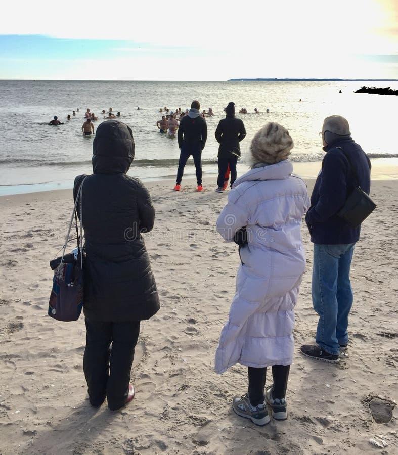 Época de caça do clube do urso polar do Coney Island de New York fotos de stock