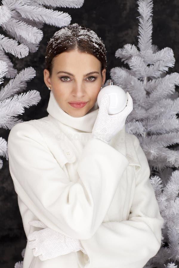 Época de Natal branca fria fotos de stock royalty free
