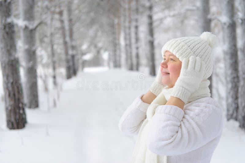 Époque d'hiver de femme heureuse de sourire heureuse photo libre de droits