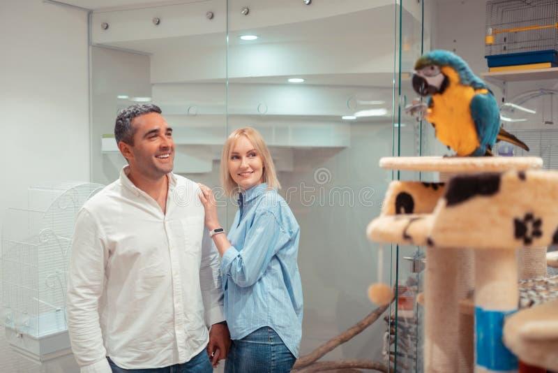 Épouse blonde aimante touchant l'épaule du mari tout en regardant le perroquet images stock