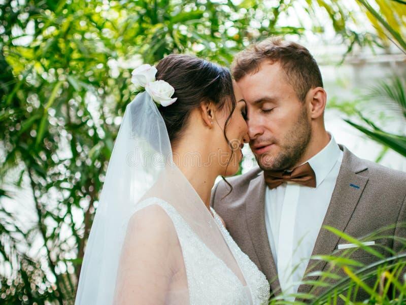 Épouser des couples à l'intérieur s'étreint Belle fille modèle dans la robe blanche Homme dans le costume Jeune mariée de beauté  photos stock