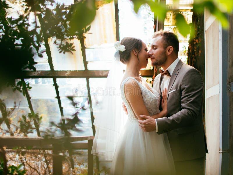 Épouser des couples à l'intérieur s'étreint Belle fille modèle dans la robe blanche Homme dans le costume Jeune mariée de beauté  images stock