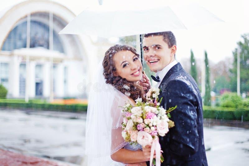 Épouser le baiser sous la pluie photo libre de droits