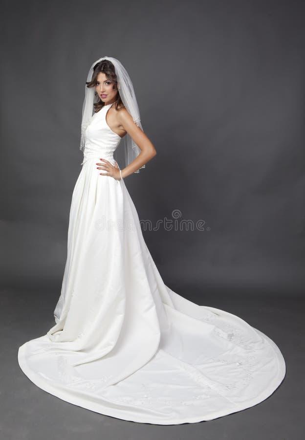 Épouser le portrait nuptiale photographie stock libre de droits