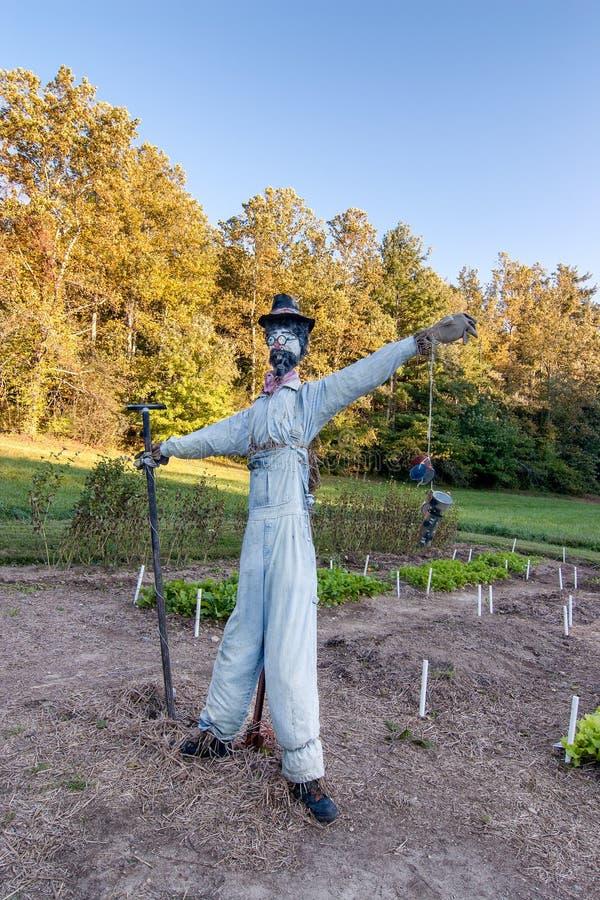 Épouvantail dans le jardin photographie stock libre de droits