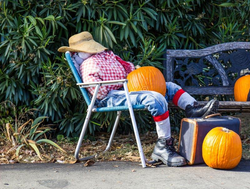 Épouvantail de Halloween sur la chaise longue avec les potirons et la valise photographie stock libre de droits
