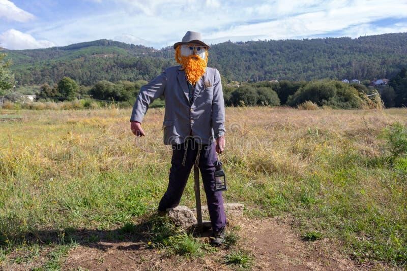 Épouvantail drôle dans le domaine Épouvantail avec la barbe et le chapeau et la lampe rouges Moissonnez le concept de protection  images stock