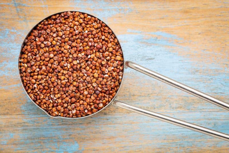 épuisette de rouge de quinoa de texture photo libre de droits