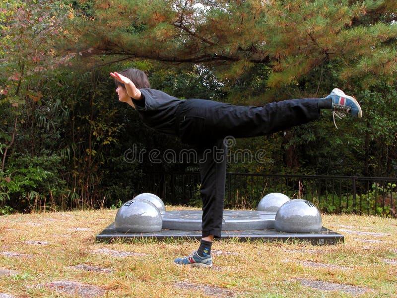 Download Équilibre image stock. Image du patte, aérobic, femme, adolescent - 50637