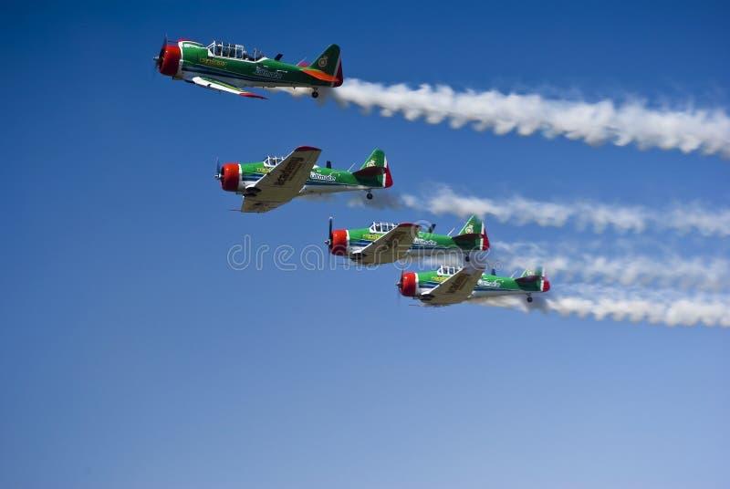 Équipe acrobatique aérienne de Harvard de lions de vol de Castrol images stock