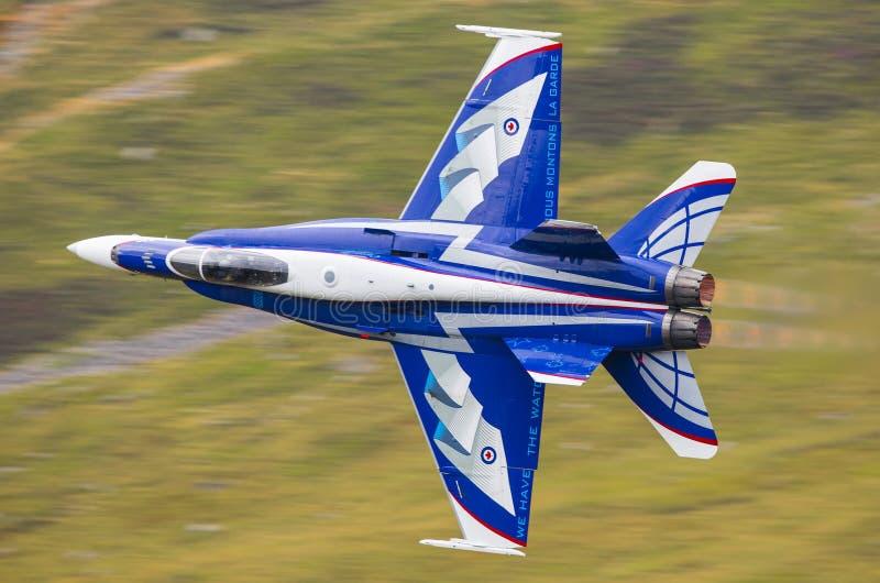 Équipe canadienne F18 de démonstration de l'armée de l'air CF-18 image libre de droits