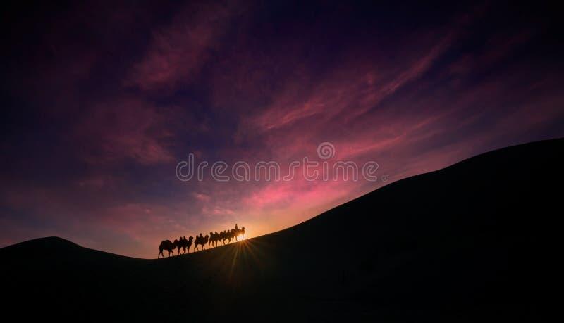 Équipe de chameau de désert d'Ejina photographie stock libre de droits