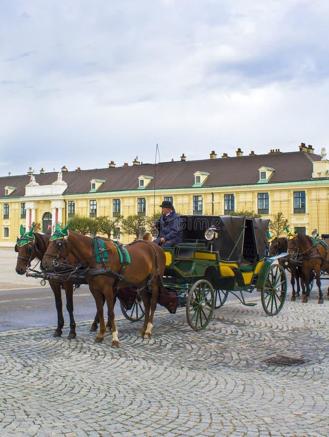 Équipe de cheval près du palais de Schonbrunn photo stock