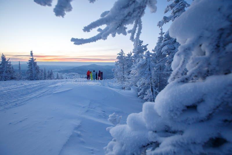 Équipe de lever de soleil de observation de personnes de filles entourée par la neige et les sapins, montagnes photo stock