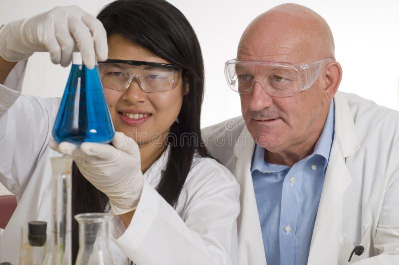 Équipe de scientifique dans le laboratoire photo stock