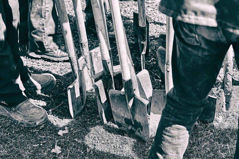 Équipe de travailleurs prêts à commencer à planter des arbres avec leurs pelles, concept de travail d'équipe photographie stock