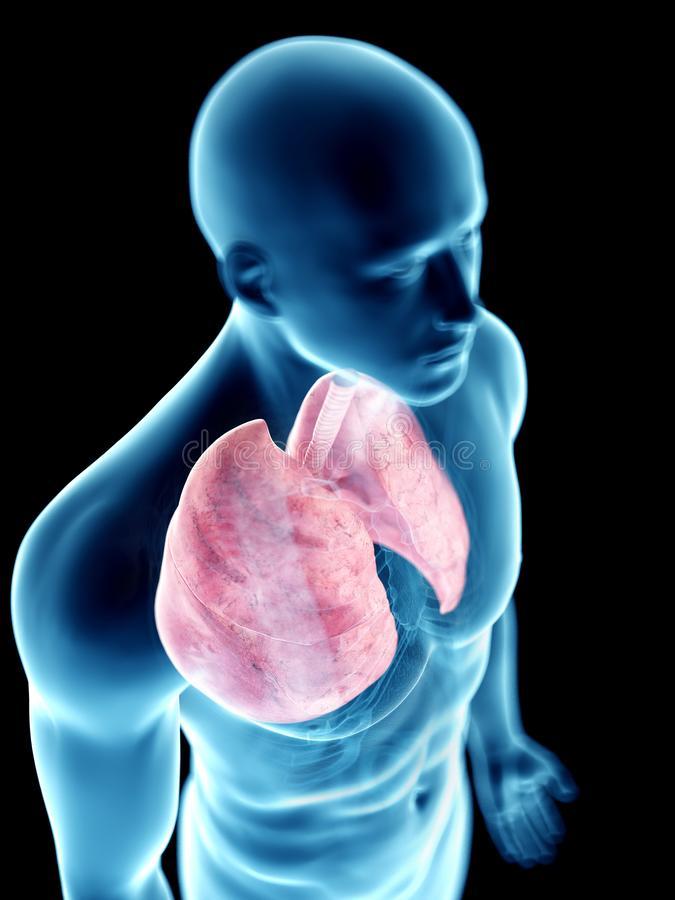 Équipe le poumon illustration libre de droits