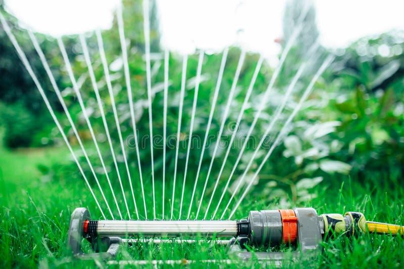 Équipez arroser le jardin, fermez-vous d'arroseuses vers le haut de la photo photo stock