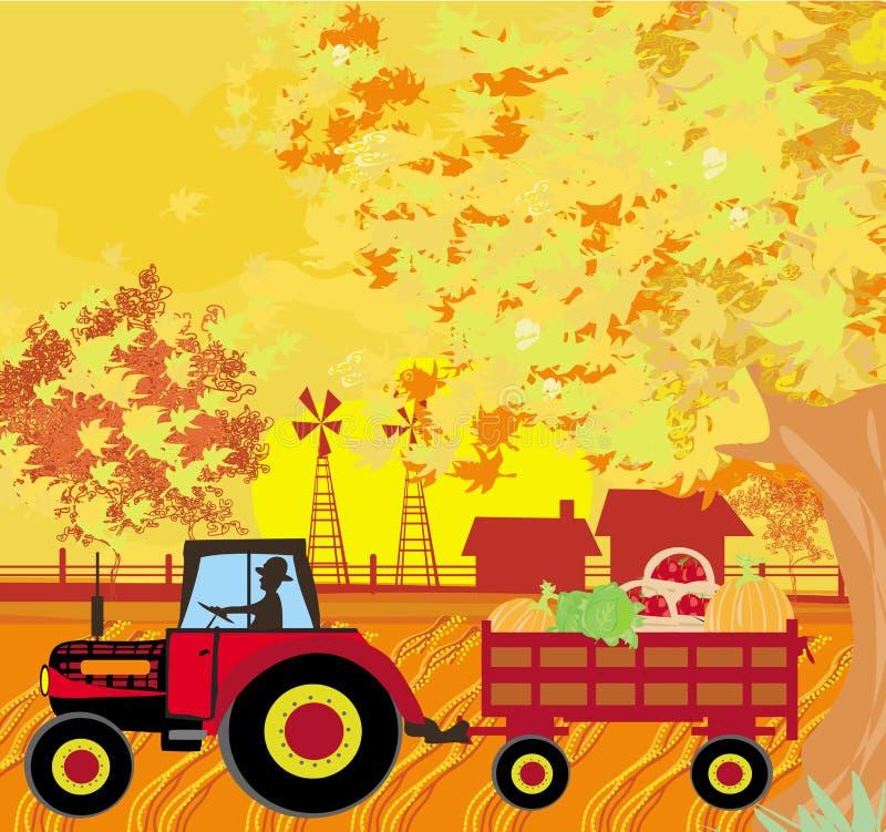 Équipez conduire un tracteur avec une remorque pleine des légumes dans l'autum illustration libre de droits