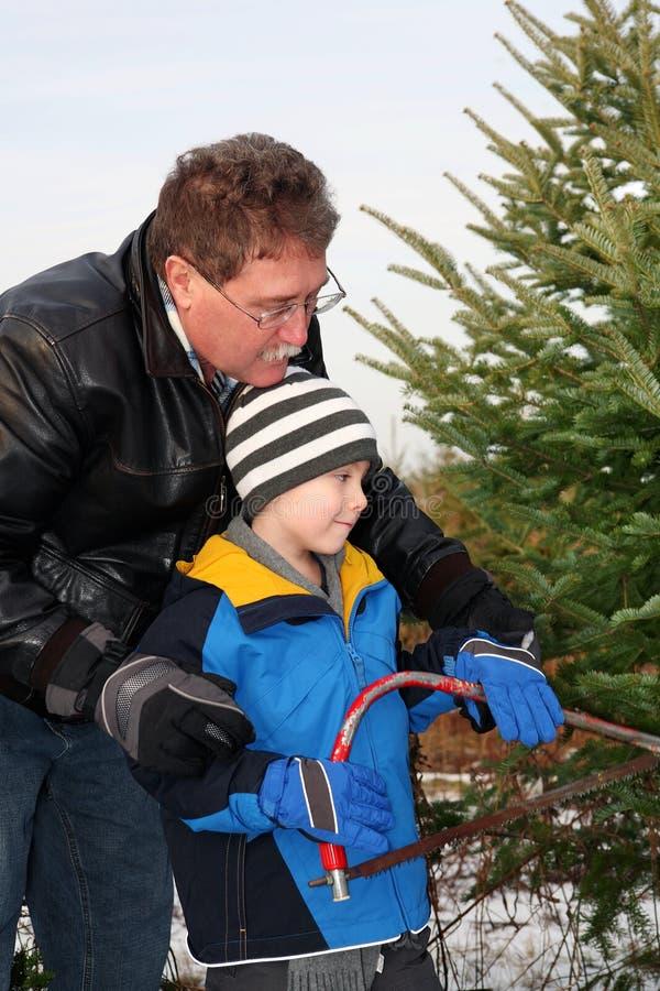 Équipez couper un arbre de Noël avec son fils photographie stock libre de droits
