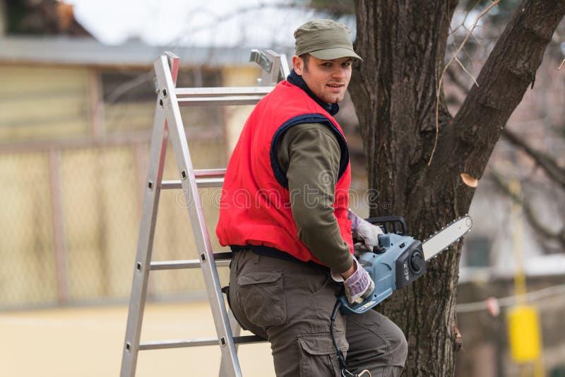 Équipez couper une branche avec la tronçonneuse dans la cour images libres de droits