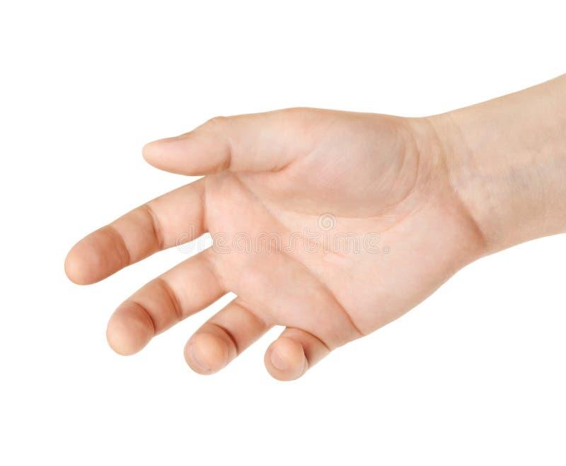 Équipez la main du ` s pour une poignée de main ou tenir quelque chose photos stock