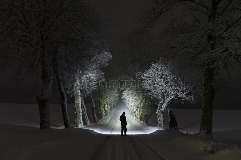 Équipez la position dehors la nuit dans l'allée d'arbre brillant avec la lampe-torche photos stock