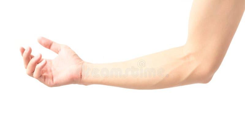 Équipez le bras avec des veines de sang sur le fond, les soins de santé et moi blancs image libre de droits