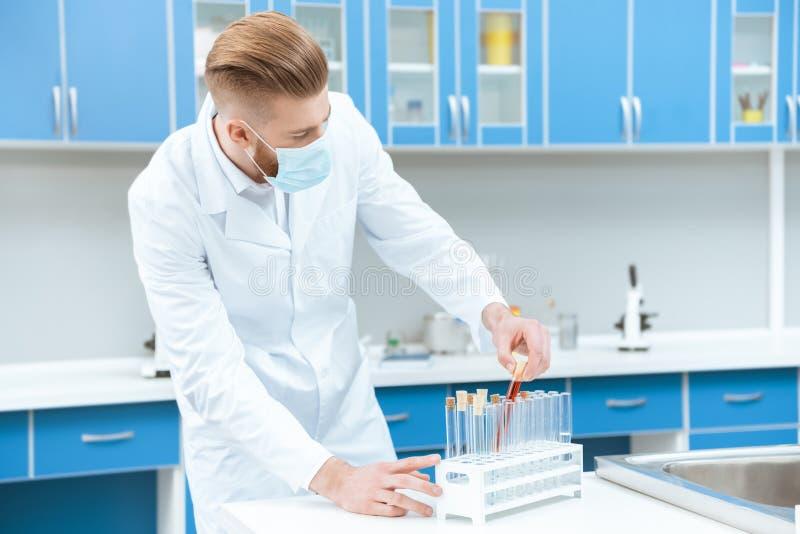 Équipez le scientifique dans le masque protecteur fonctionnant avec des tubes à essai dans le laboratoire photographie stock libre de droits