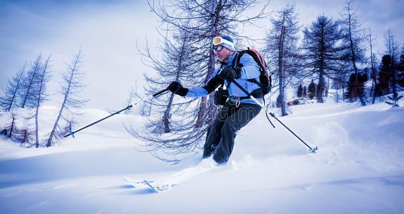 Équipez le ski dans la neige de poudre dans les bois neigeux photo libre de droits