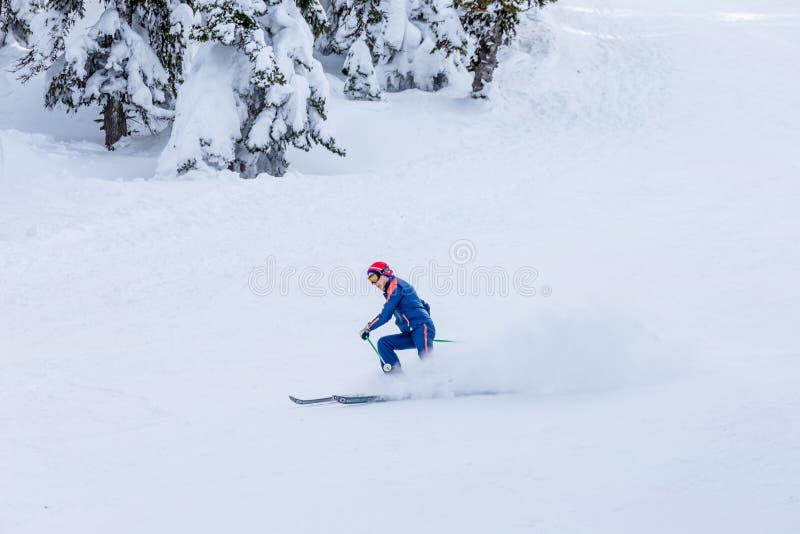 Équipez le ski de skieur sur la neige blanche fraîche sur la pente de ski image stock