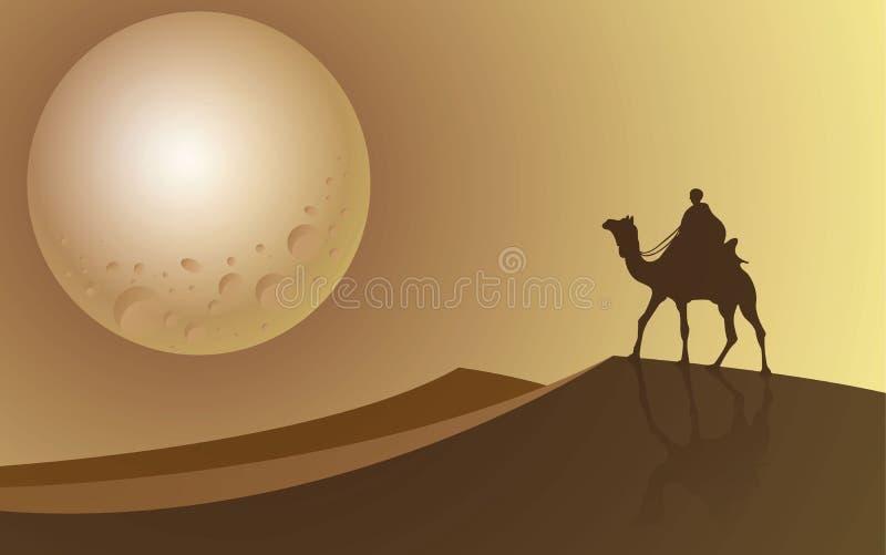 Équipez le tour un chameau regardant à la pleine lune le désert images stock