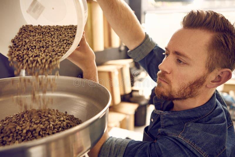 Équipez les grains de café de versement dans une machine de torréfaction photos stock