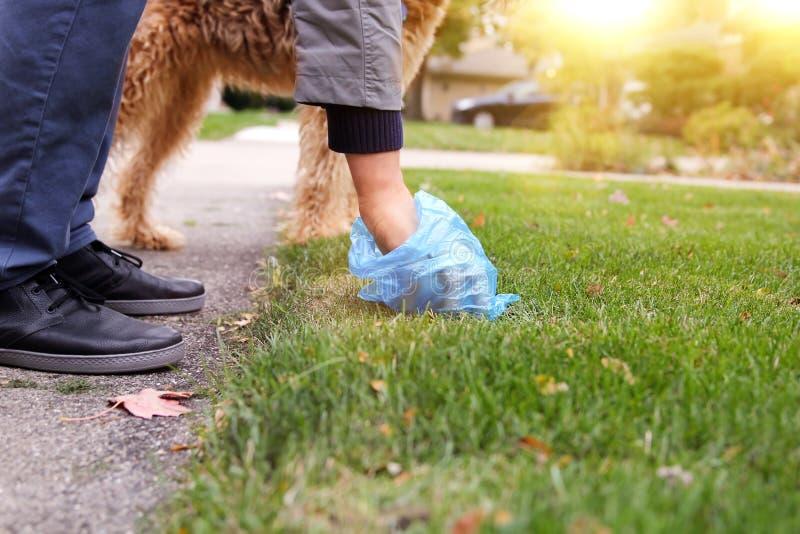 Équipez sélectionner/nettoyant des crottes de chien photos libres de droits