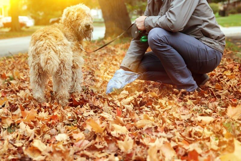 Équipez sélectionner/nettoyant des crottes de chien photo libre de droits