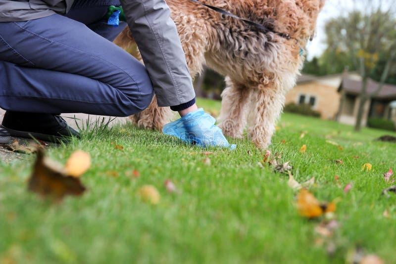 Équipez sélectionner/nettoyant des crottes de chien photo stock
