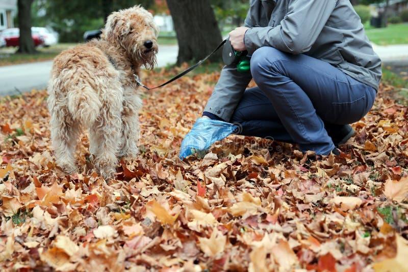 Équipez sélectionner/nettoyant des crottes de chien photographie stock