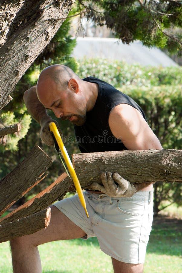 Équipez scier un branchement d'arbre avec un handsaw photographie stock