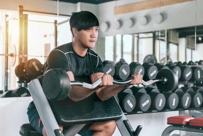 Équipez travailler à son biceps en soulevant un barbell image stock