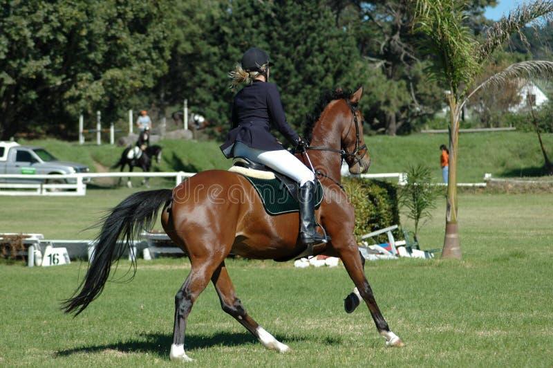 Équitation photos stock
