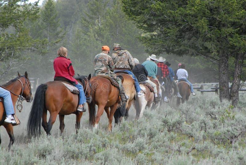 Équitation arrière de cheval sur le journal photos libres de droits