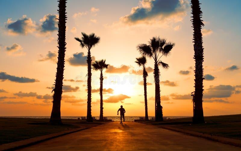 Équitation d'homme sur la planche à roulettes dans le coucher du soleil photographie stock