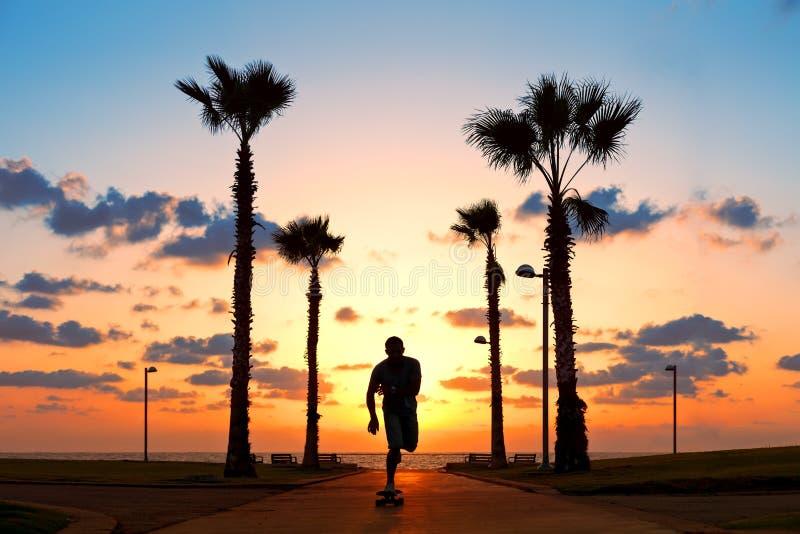 Équitation d'homme sur la planche à roulettes dans le coucher du soleil photos libres de droits