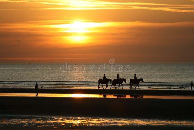 Équitation dans le coucher du soleil photographie stock libre de droits